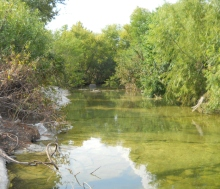 creek west of I35