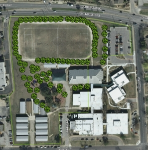 Barrington Elementary School Park tree update_1 cropped